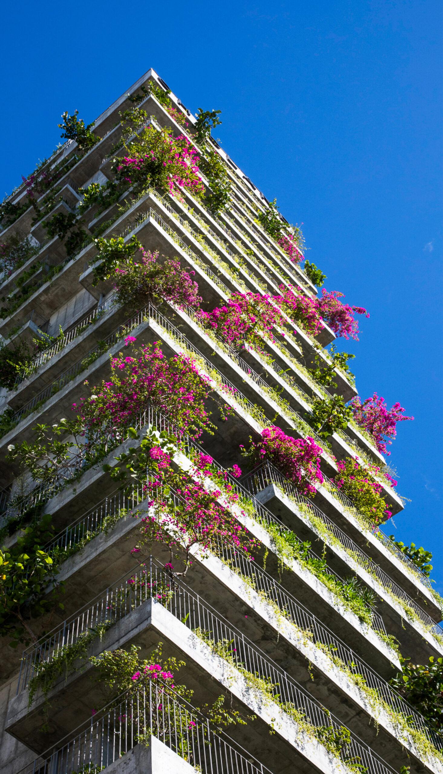 Zielony hotel w Wietnamie