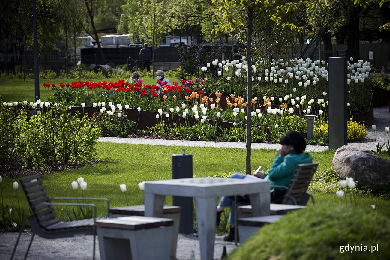 Park Centralny w Gdyni