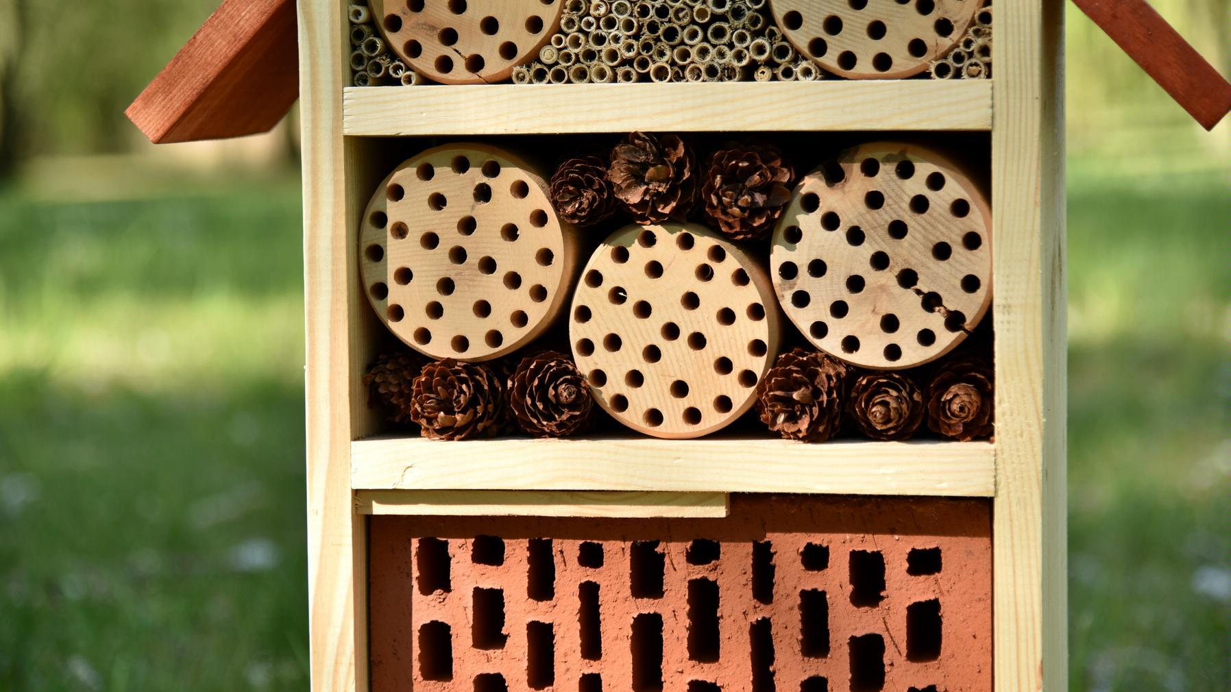 domków dla owadów