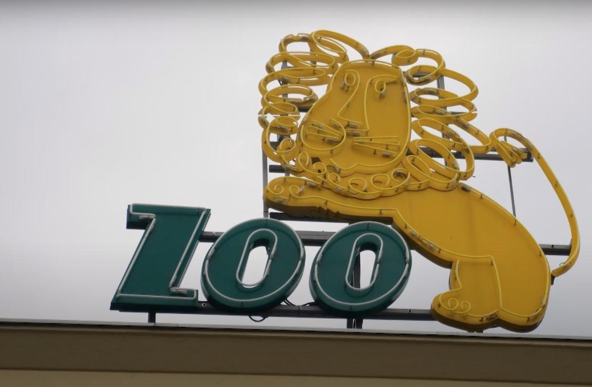 przystanek zoo