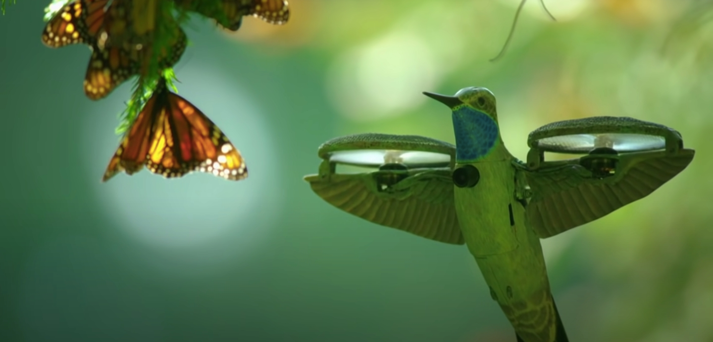 dron-ptak