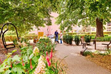ogród dębowy