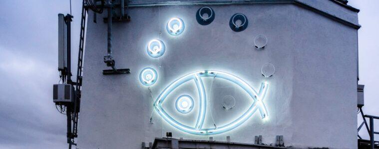Neon w Gdyni