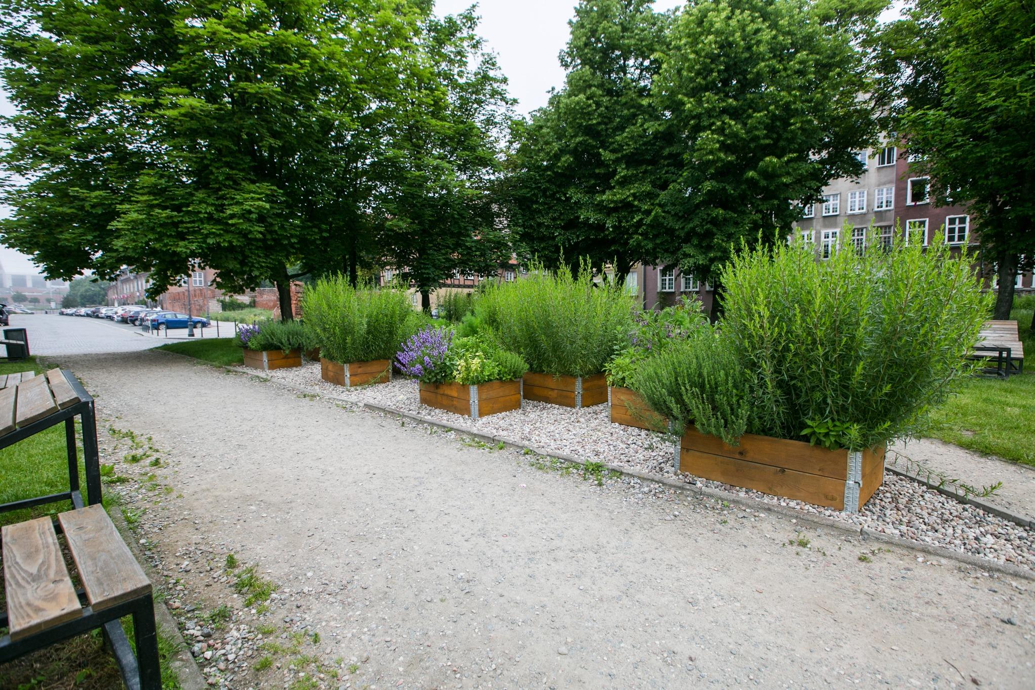 Miejskie farmy