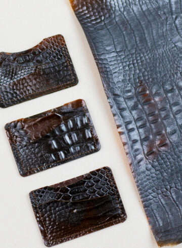 Materiał z pancerzy krewetek
