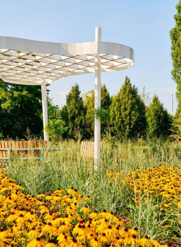 Ogród Trawiasty w Krakowie