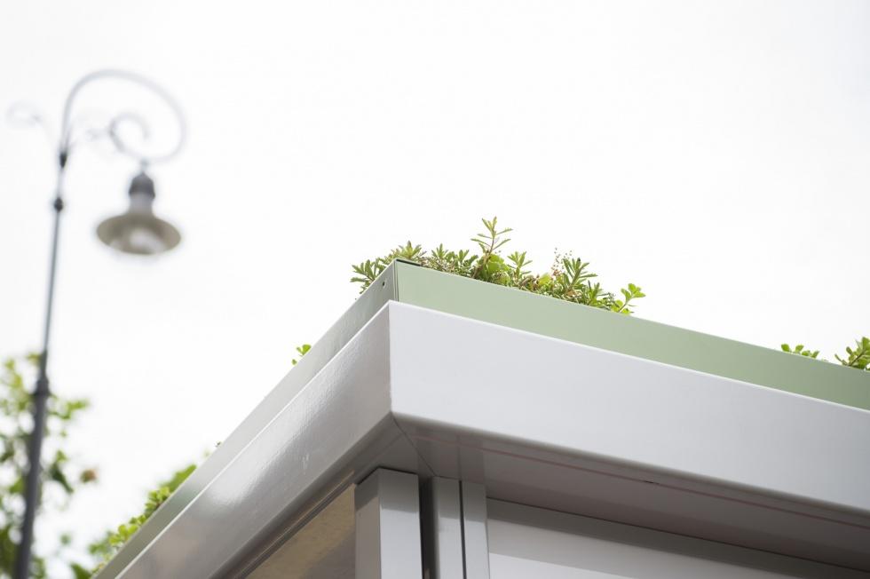 wiata z trawą na dachu