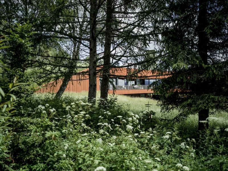 Dom w Bieszczadachod Medusa Group