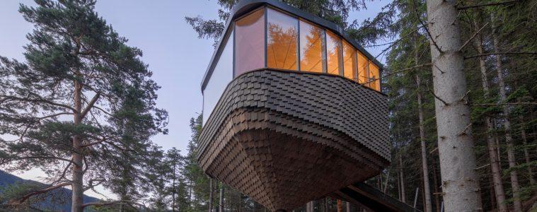 Domki na drzewach