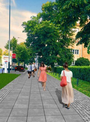 drzewa wracająna ulicę Królowej Jadwigi