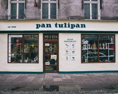 Pan Tulipan