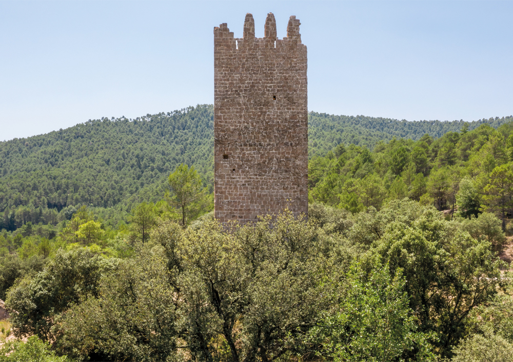 Wieża Merola