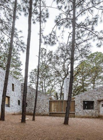 Kamień, cement i drewno, czyli surowy dom w sercu lasu