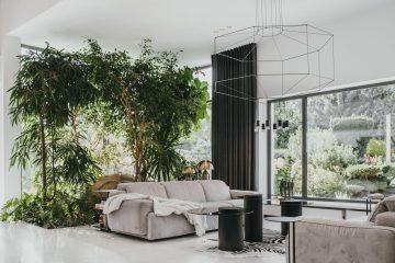 dom roślin