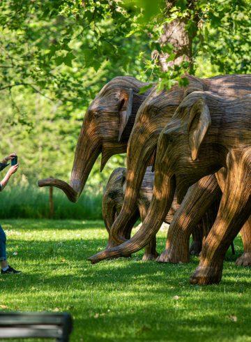 słonie w Londynie
