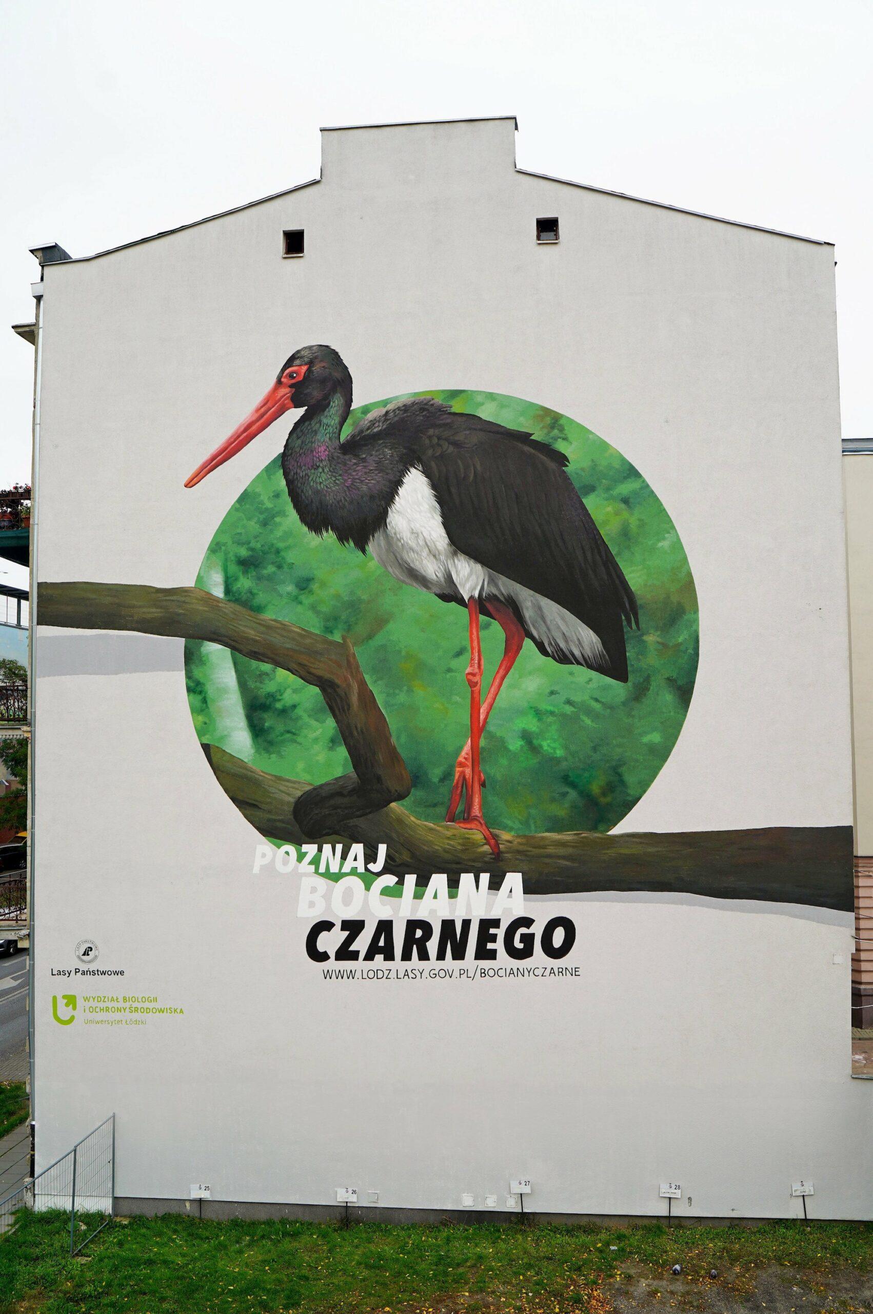 Mural Bocian Czarny