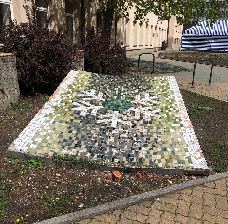 mozaika hortex